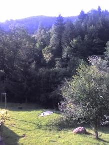 Saint-Maurice-sur-Moselle 15-08-07